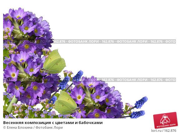 Весенняя композиция с цветами и бабочками, фото № 162876, снято 29 марта 2017 г. (c) Елена Блохина / Фотобанк Лори