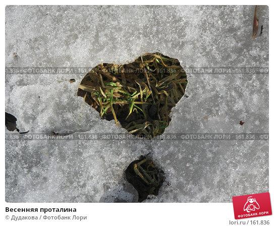Весенняя проталина, фото № 161836, снято 1 апреля 2007 г. (c) Дудакова / Фотобанк Лори