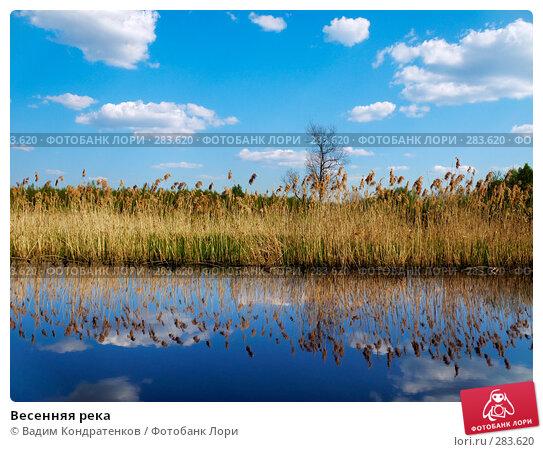 Весенняя река, фото № 283620, снято 25 июня 2017 г. (c) Вадим Кондратенков / Фотобанк Лори