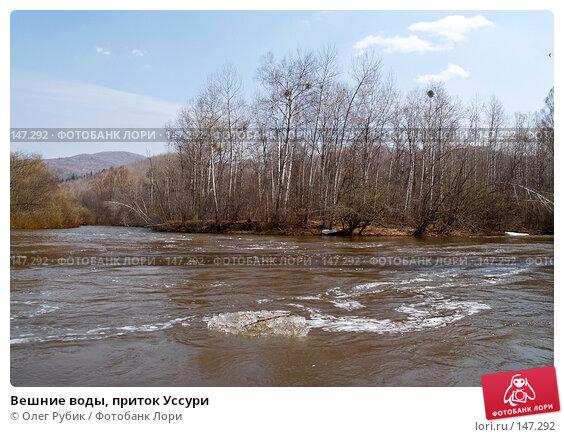Вешние воды, приток Уссури, фото № 147292, снято 29 апреля 2007 г. (c) Олег Рубик / Фотобанк Лори