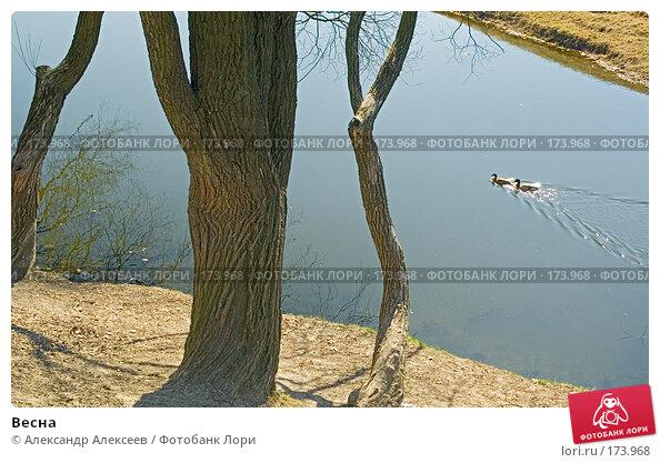 Весна, эксклюзивное фото № 173968, снято 30 апреля 2006 г. (c) Александр Алексеев / Фотобанк Лори