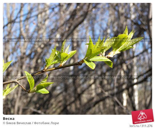 Весна, фото № 311276, снято 27 апреля 2008 г. (c) Бяков Вячеслав / Фотобанк Лори