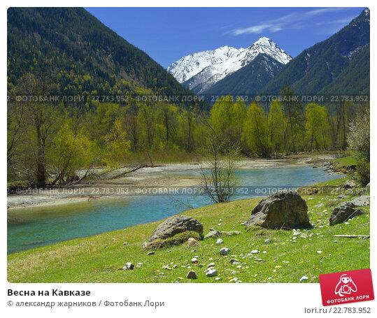 Купить «Весна на Кавказе», фото № 22783952, снято 3 мая 2016 г. (c) александр жарников / Фотобанк Лори