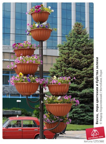 Весна,  пора цветения и буйства зелени, фото № 273560, снято 31 марта 2007 г. (c) Федор Королевский / Фотобанк Лори