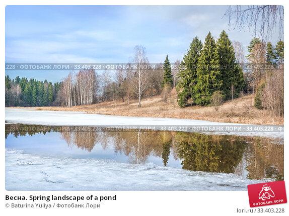 Купить «Весна Spring landscape of a pond», фото № 33403228, снято 9 марта 2020 г. (c) Baturina Yuliya / Фотобанк Лори