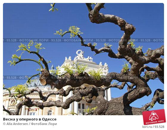 Купить «Весна у оперного в Одессе», фото № 93528, снято 4 мая 2007 г. (c) Alla Andersen / Фотобанк Лори