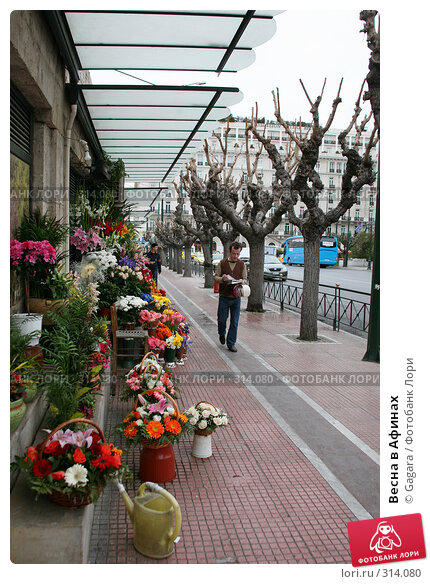 Весна в Афинах, фото № 314080, снято 11 марта 2008 г. (c) Gagara / Фотобанк Лори