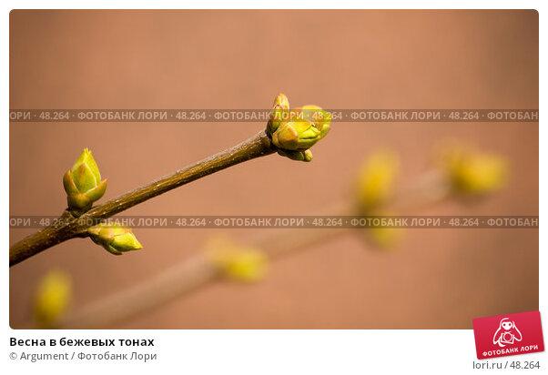 Весна в бежевых тонах, фото № 48264, снято 30 марта 2007 г. (c) Argument / Фотобанк Лори