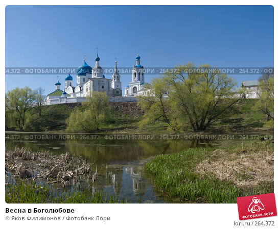 Весна в Боголюбове, фото № 264372, снято 21 января 2017 г. (c) Яков Филимонов / Фотобанк Лори