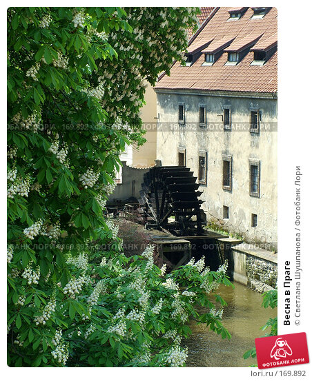 Купить «Весна в Праге», фото № 169892, снято 7 мая 2006 г. (c) Светлана Шушпанова / Фотобанк Лори