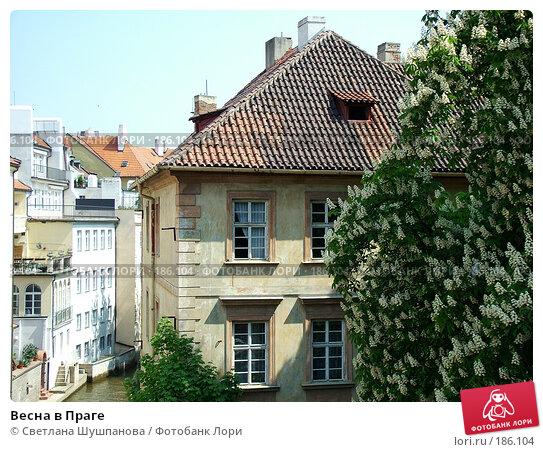 Купить «Весна в Праге», фото № 186104, снято 7 мая 2006 г. (c) Светлана Шушпанова / Фотобанк Лори