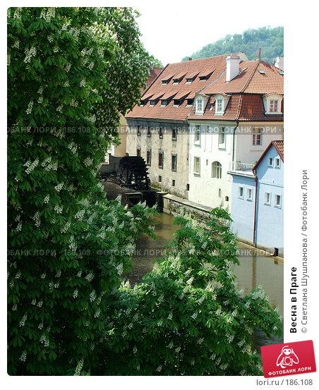 Весна в Праге, фото № 186108, снято 7 мая 2006 г. (c) Светлана Шушпанова / Фотобанк Лори