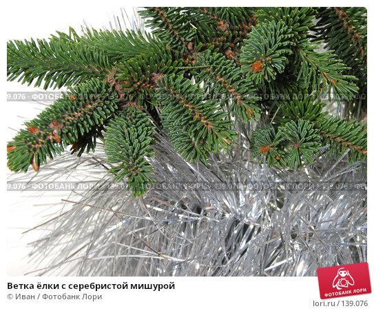 Ветка ёлки с серебристой мишурой, фото № 139076, снято 30 октября 2007 г. (c) Иван / Фотобанк Лори