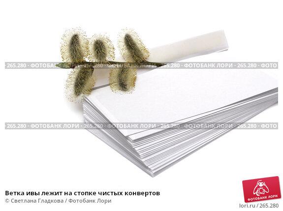 Ветка ивы лежит на стопке чистых конвертов, фото № 265280, снято 9 апреля 2008 г. (c) Cветлана Гладкова / Фотобанк Лори