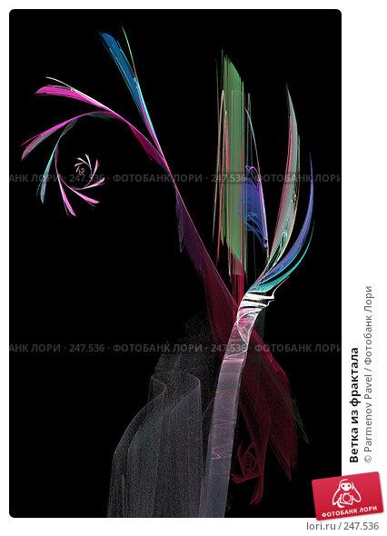 Ветка из фрактала, иллюстрация № 247536 (c) Parmenov Pavel / Фотобанк Лори
