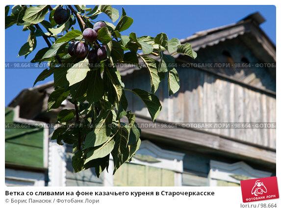 Ветка со сливами на фоне казачьего куреня в Старочеркасске, фото № 98664, снято 25 августа 2007 г. (c) Борис Панасюк / Фотобанк Лори
