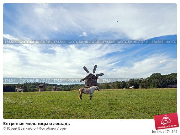 Купить «Ветряные мельницы и лошадь», фото № 174544, снято 31 июля 2007 г. (c) Юрий Брыкайло / Фотобанк Лори