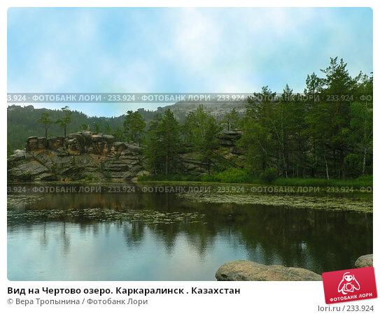 Вид на Чертово озеро. Каркаралинск . Казахстан, фото № 233924, снято 20 февраля 2017 г. (c) Вера Тропынина / Фотобанк Лори