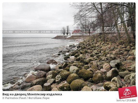 Вид на дворец Монплезир издалека, фото № 213800, снято 13 февраля 2008 г. (c) Parmenov Pavel / Фотобанк Лори