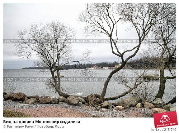 Вид на дворец Монплезир издалека, фото № 215740, снято 13 февраля 2008 г. (c) Parmenov Pavel / Фотобанк Лори