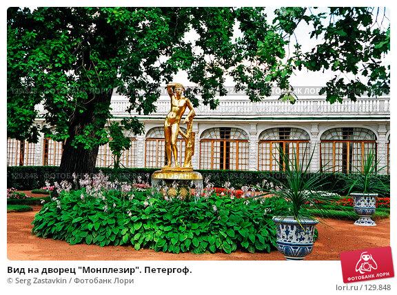 """Купить «Вид на дворец """"Монплезир"""". Петергоф.», фото № 129848, снято 22 апреля 2018 г. (c) Serg Zastavkin / Фотобанк Лори"""