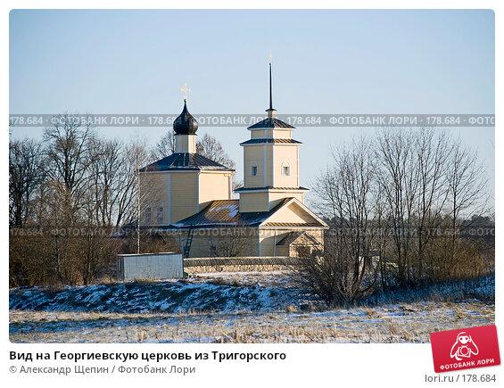 Вид на Георгиевскую церковь из Тригорского, эксклюзивное фото № 178684, снято 5 января 2008 г. (c) Александр Щепин / Фотобанк Лори