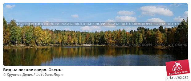 Вид на лесное озеро. Осень., фото № 92232, снято 27 марта 2017 г. (c) Крупнов Денис / Фотобанк Лори
