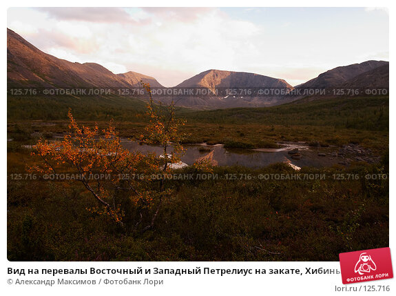 Вид на перевалы Восточный и Западный Петрелиус на закате, Хибины, фото № 125716, снято 22 августа 2006 г. (c) Александр Максимов / Фотобанк Лори