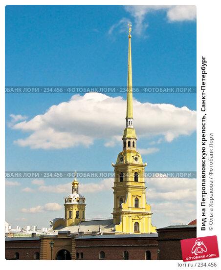 Вид на Петропавловскую крепость, Санкт-Петербург, эксклюзивное фото № 234456, снято 16 июня 2007 г. (c) Ольга Хорькова / Фотобанк Лори
