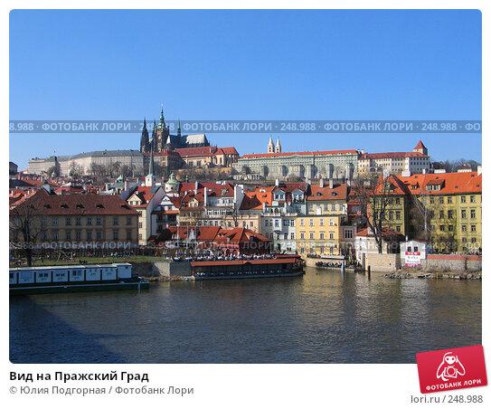 Вид на Пражский Град, фото № 248988, снято 15 марта 2008 г. (c) Юлия Селезнева / Фотобанк Лори