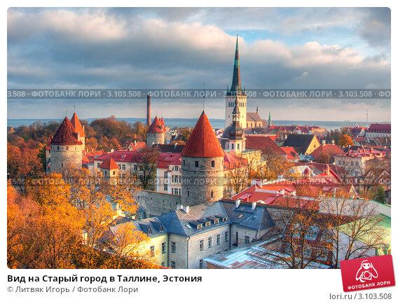Вид на Старый город в Таллине, Эстония. Стоковое фото, фотограф Литвяк Игорь / Фотобанк Лори