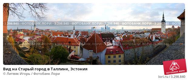 Купить «Вид на Старый город в Таллине, Эстония», эксклюзивное фото № 3298840, снято 22 февраля 2018 г. (c) Литвяк Игорь / Фотобанк Лори