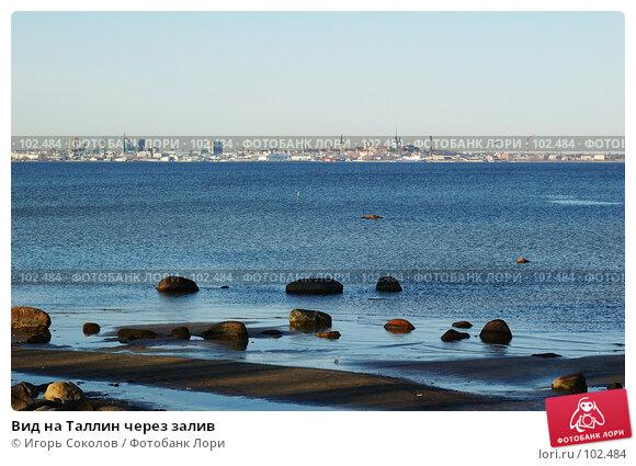 Купить «Вид на Таллин через залив», фото № 102484, снято 22 ноября 2017 г. (c) Игорь Соколов / Фотобанк Лори