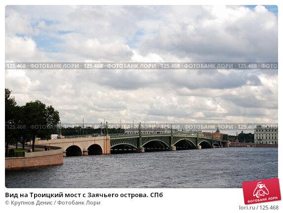 Вид на Троицкий мост с Заячьего острова. СПб, фото № 125468, снято 28 июля 2007 г. (c) Крупнов Денис / Фотобанк Лори