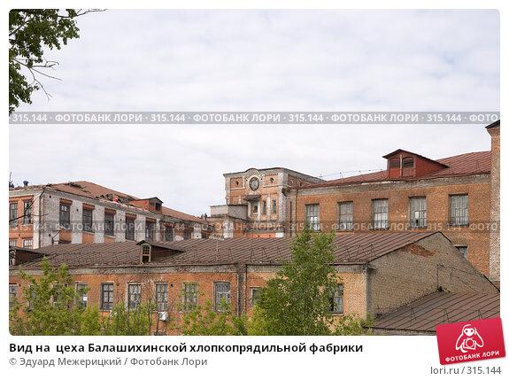 Вид на  цеха Балашихинской хлопкопрядильной фабрики, фото № 315144, снято 29 мая 2008 г. (c) Эдуард Межерицкий / Фотобанк Лори