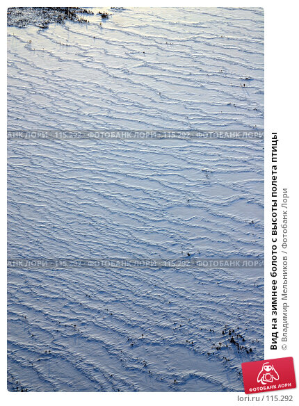 Вид на зимнее болото с высоты полета птицы, фото № 115292, снято 7 декабря 2004 г. (c) Владимир Мельников / Фотобанк Лори