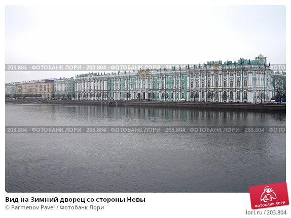 Вид на Зимний дворец со стороны Невы, фото № 203804, снято 6 февраля 2008 г. (c) Parmenov Pavel / Фотобанк Лори