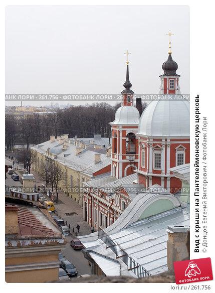 Вид с крыши на Пантелеймоновскую церковь, фото № 261756, снято 17 апреля 2008 г. (c) Донцов Евгений Викторович / Фотобанк Лори