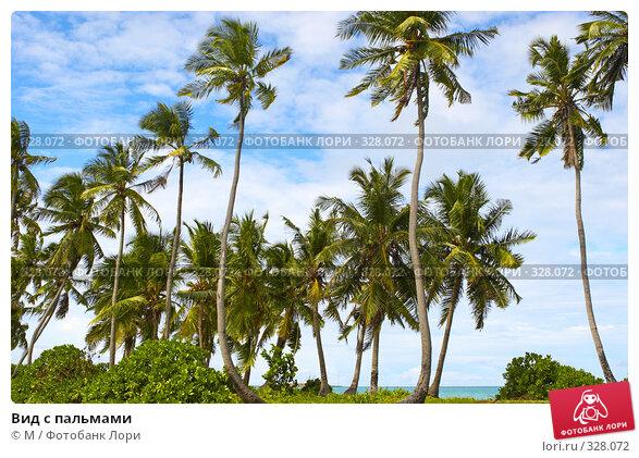Вид с пальмами, фото № 328072, снято 31 марта 2017 г. (c) Михаил / Фотобанк Лори