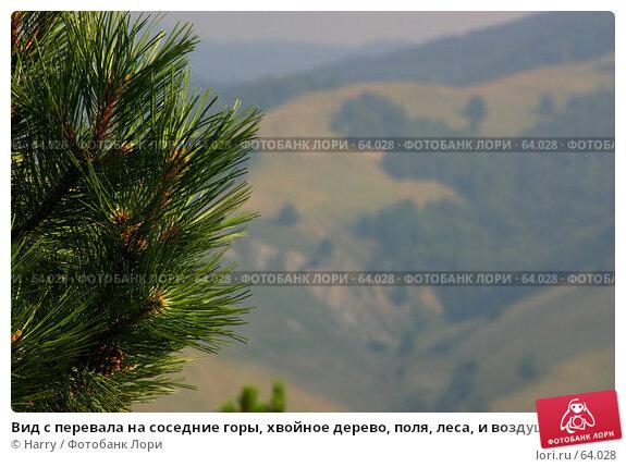 Вид с перевала на соседние горы, хвойное дерево, поля, леса, и воздушная дымка, фото № 64028, снято 30 июля 2005 г. (c) Harry / Фотобанк Лори