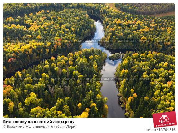 Вид сверху на осенний лес и реку. Стоковое фото, фотограф Владимир Мельников / Фотобанк Лори