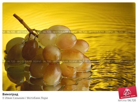 Виноград, фото № 96720, снято 6 декабря 2003 г. (c) Иван Сазыкин / Фотобанк Лори