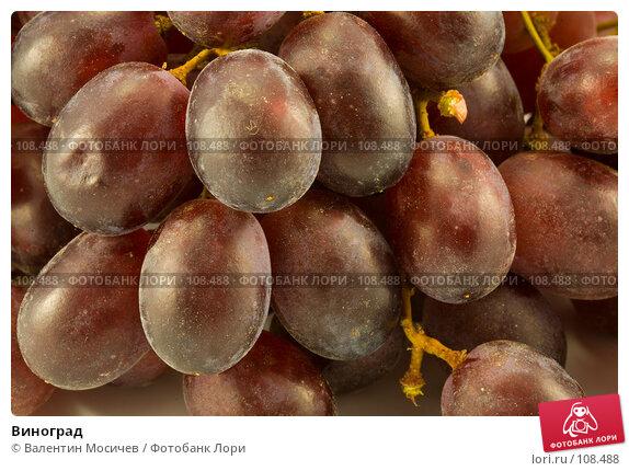 Купить «Виноград», фото № 108488, снято 5 мая 2007 г. (c) Валентин Мосичев / Фотобанк Лори