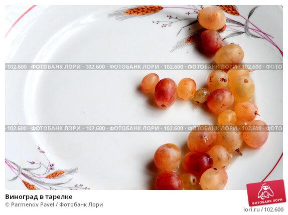 Виноград в тарелке, фото № 102600, снято 20 сентября 2017 г. (c) Parmenov Pavel / Фотобанк Лори