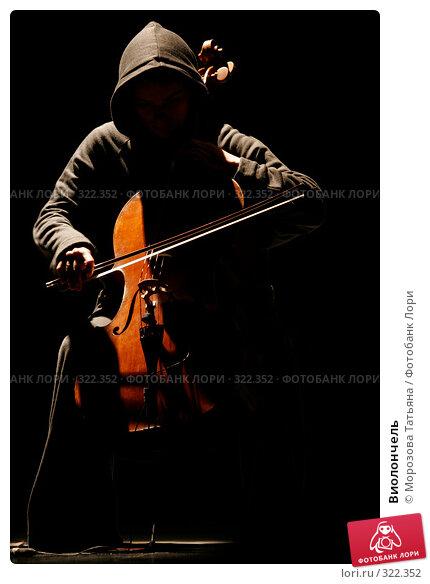 Виолончель, фото № 322352, снято 5 июня 2006 г. (c) Морозова Татьяна / Фотобанк Лори