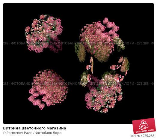 Витрина цветочного магазина, иллюстрация № 275288 (c) Parmenov Pavel / Фотобанк Лори