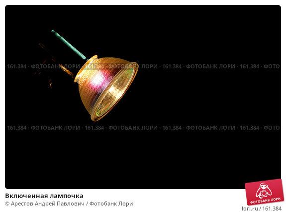 Купить «Включенная лампочка», фото № 161384, снято 16 декабря 2017 г. (c) Арестов Андрей Павлович / Фотобанк Лори