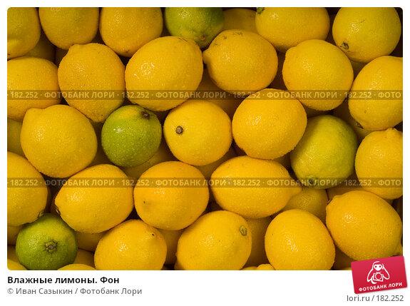 Влажные лимоны. Фон, фото № 182252, снято 30 июля 2003 г. (c) Иван Сазыкин / Фотобанк Лори