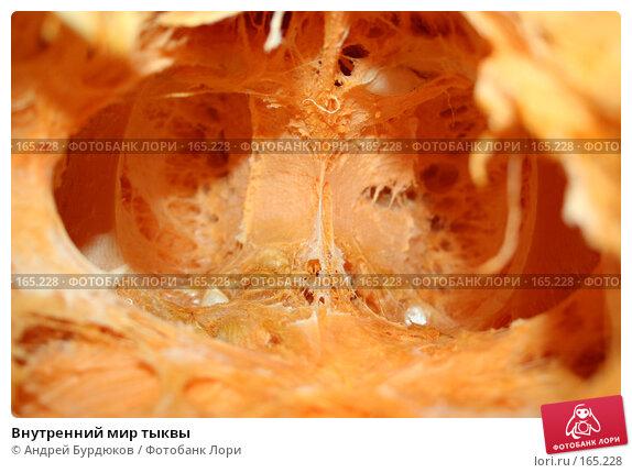 Внутренний мир тыквы, фото № 165228, снято 22 декабря 2007 г. (c) Андрей Бурдюков / Фотобанк Лори