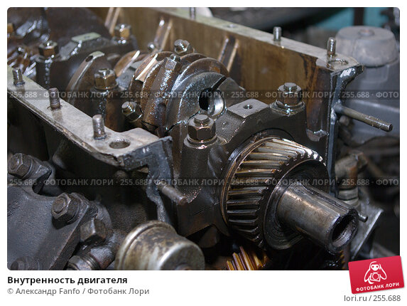 Внутренность двигателя, фото № 255688, снято 26 октября 2016 г. (c) Александр Fanfo / Фотобанк Лори